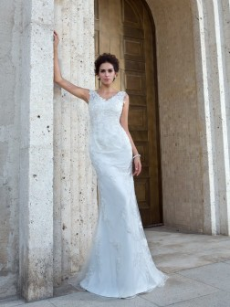 Trumpet/Mermaid V-neck Applique Sleeveless Sweep/Brush Train Net Wedding Dresses